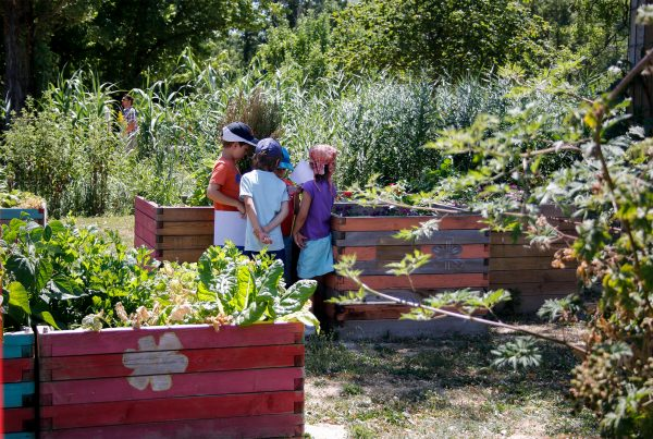 animation iloz enfants jardin sens jardinière