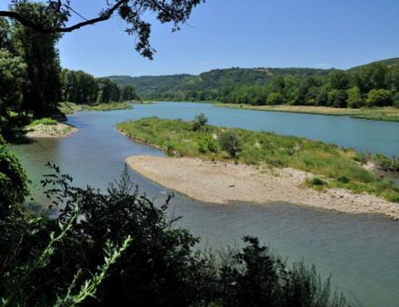 Vue d'ailleurs : Une restauration ambitieuse du Rhône à l'île de la Platière